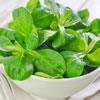 Spinach Sautée