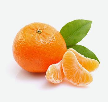 Jaffa Mandarins
