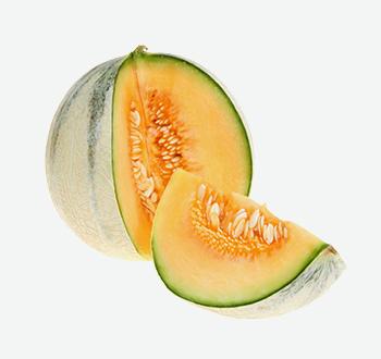 Jumbo Cantaloupes