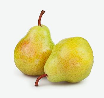 Bosc & Bartlett Pears